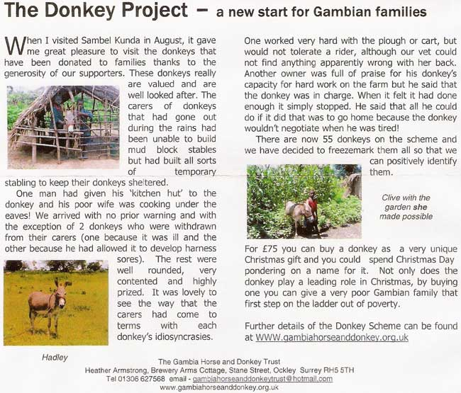Gambia Horses and Donkeys