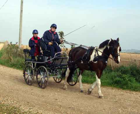 Dorset and South Wilts BDS Treasure Hunt  2015